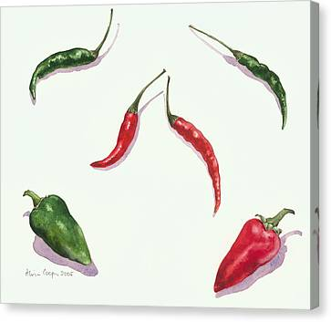 Chillies And Peppers Canvas Print by Alison Cooper