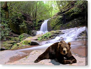 Chillin Bear Canvas Print by Bob Jackson