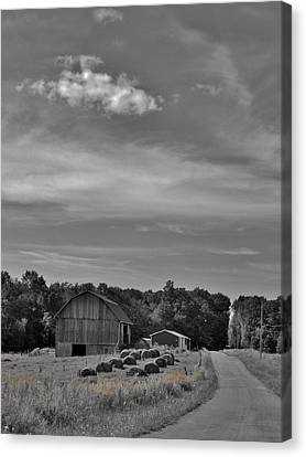 Chillin On A Dirt Road Canvas Print by Anthony Thomas