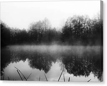 Chilly Morning Reflections Canvas Print by Miguel Winterpacht