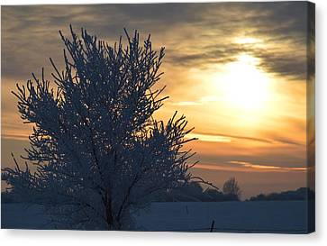 Canvas Print featuring the photograph Chilly Sunrise by Dacia Doroff