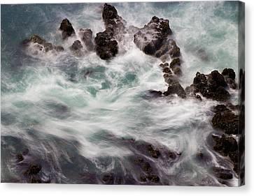 Chimerical Ocean Canvas Print