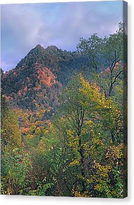 Chimney Tops, Great Smokey Mountains Canvas Print