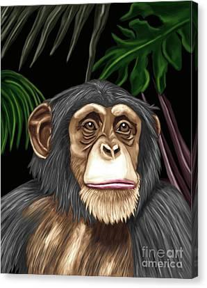 Chimp Canvas Print by Karen Sheltrown