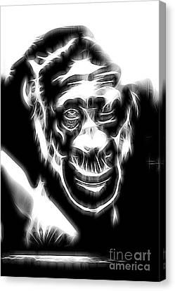 Chimpanzee Abstract Canvas Print