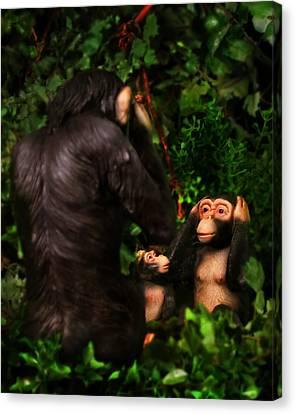 Chimps Canvas Print by Diane Bradley