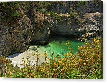 China Beach Canvas Print - China Cove And Beach, Point Lobos State by Michel Hersen