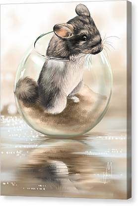 Chinchilla Canvas Print by Veronica Minozzi