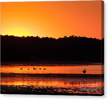 Canvas Print featuring the photograph Chincoteague Sunset by Dale Nelson
