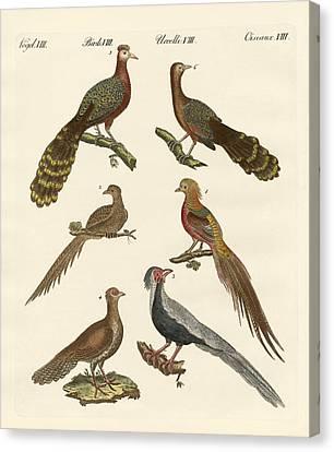 Chinese Birds Canvas Print by Splendid Art Prints