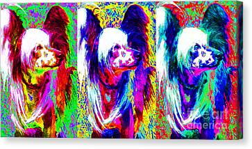 Chinese Crested Dog Three 20130125 Canvas Print by Wingsdomain Art and Photography