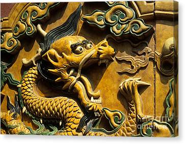 Chinese Dragon Portrait Canvas Print by James Brunker