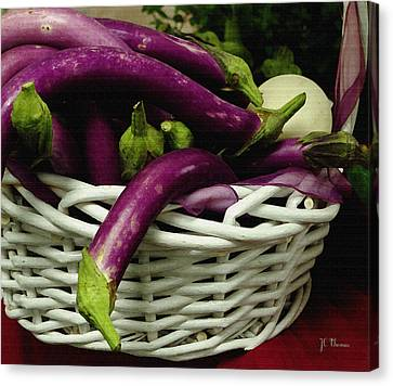 Chinese Egg Plant Canvas Print by James C Thomas