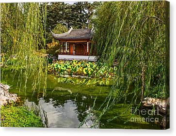 Chinese Garden Breeze Canvas Print by Jamie Pham