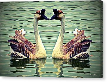 Chinese Geese Canvas Print by Christina Ochsner