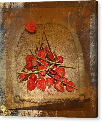 Chinese Lantern Seed Pods Canvas Print by Kume Bryant