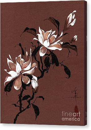 Chinese Magnolia Canvas Print by Linda Smith