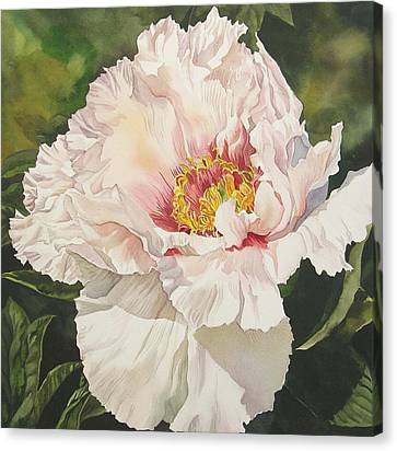 Alfred Ng Art Canvas Print - Chinese Tree Peony by Alfred Ng