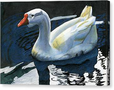 Chinese Waterfowl Canvas Print by Sharon Freeman