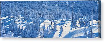 Snow-covered Landscape Canvas Print - Chino Nagano Japan by Panoramic Images