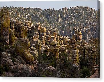 Chiricahua National Park - The Grotto 02 Canvas Print by George Bostian