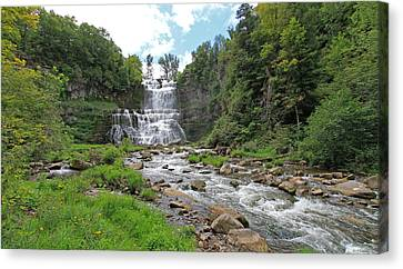 Chittenango Falls In August Canvas Print by John   Kennedy