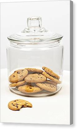 Chocolate Chip Cookies In Jar Canvas Print by Elena Elisseeva