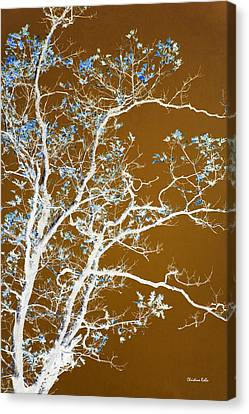 Nature Abstracts Canvas Print - Chocolate Forest Tree Art by Christina Rollo