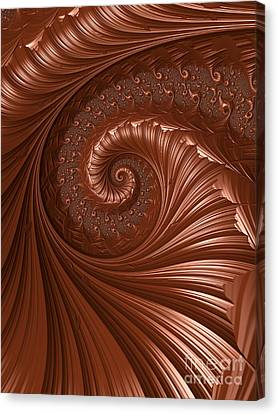 Chocolate  Canvas Print by Heidi Smith