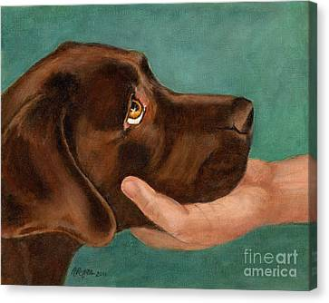 Chocolate Lab Head In Hand Canvas Print by Amy Reges