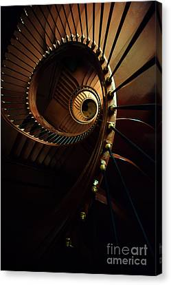 Chocolate Spirals Canvas Print