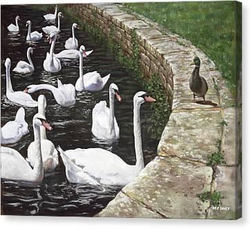 christchurch harbour swans with Mallard Duck conversation Canvas Print by Martin Davey