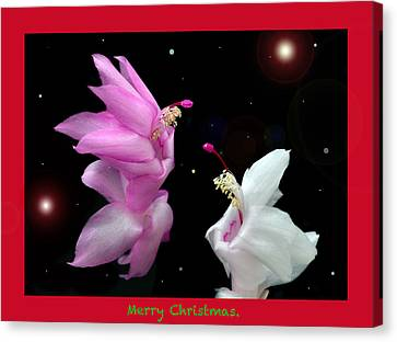 Christmas Cactus Canvas Print - Christmas Cactus Fantasy by Terence Davis