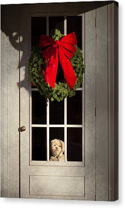 Christmas - Clinton Nj - Christmas Puppy Canvas Print by Mike Savad