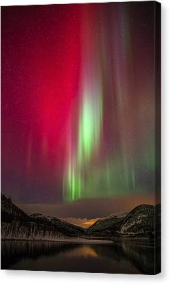 Christmas Colors Canvas Print by Anders Hanssen