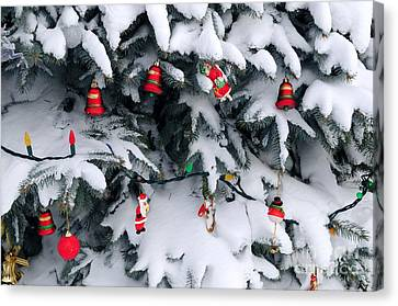 Frosty Canvas Print - Christmas Decorations In Snow by Elena Elisseeva