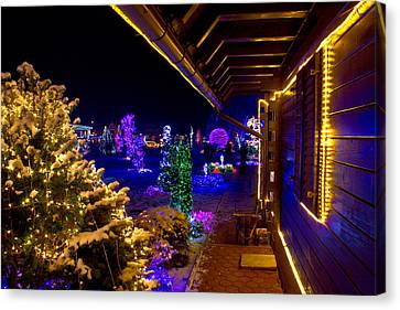 Christmas Fantasy Trees And Wooden House In Lights Canvas Print