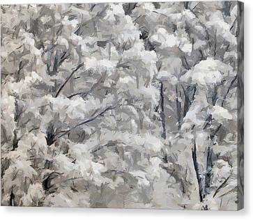 Christmas Forest 1 Canvas Print by Yury Malkov