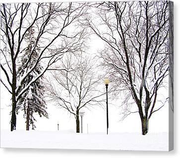 Skaneateles Lake Canvas Print - Christmas In Skaneateles by Margie Amberge