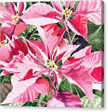Christmas Canvas Print by Irina Sztukowski