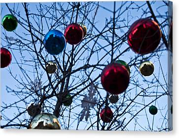 Christmas Is Looking Up This Year Canvas Print by Bill Cannon