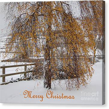 Christmas Is Orange Canvas Print