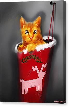 Christmas Kitten Canvas Print by Ken Morris