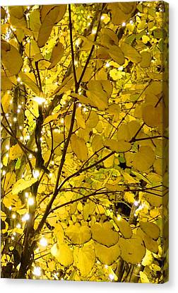 Canvas Print featuring the photograph Christmas Lights by Julia Ivanovna Willhite