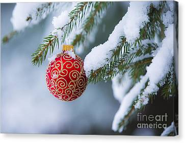 Bough Canvas Print - Christmas Ornament by Diane Diederich