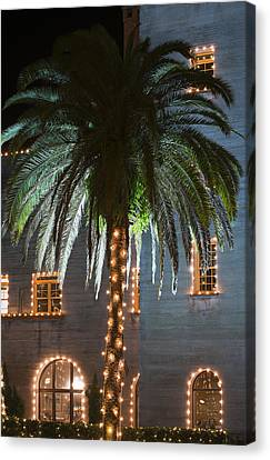 Christmas Palm Canvas Print by Kenneth Albin