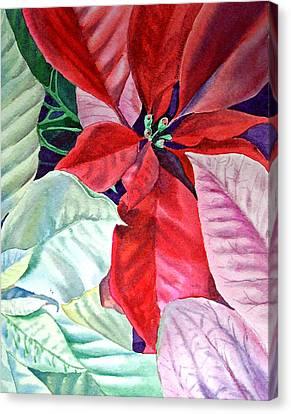 Christmas Poinsettia Canvas Print by Irina Sztukowski