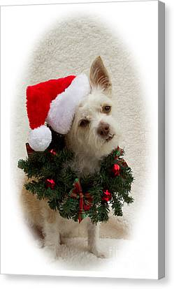 Christmas Puppy Canvas Print