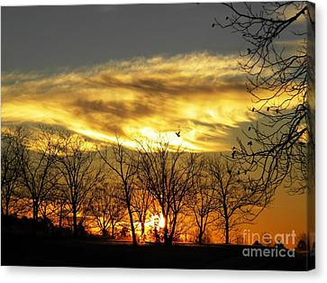 Christmas Sunrise Canvas Print