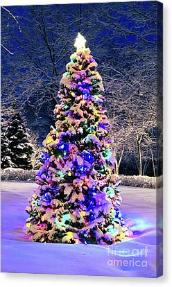 Christmas Tree In Snow Canvas Print by Elena Elisseeva